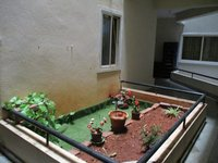 13DCU00416: Garden 1