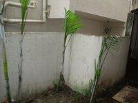 14A8U00034: Garden 1