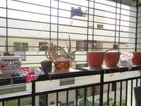12DCU00198: Balcony 2