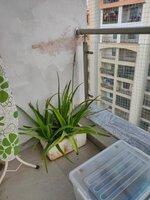 14DCU00603: Balcony 2