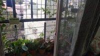 14F2U00413: Balcony 1