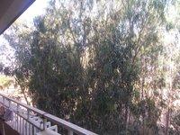 13NBU00045: Balcony 1