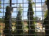 15F2U00159: Balcony 1