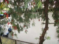 15F2U00420: Balcony 1
