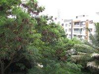 15S9U00456: Balcony 2