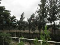 11J6U00372: Balcony 4