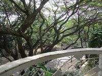 13DCU00149: Balcony 1