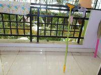 13J6U00069: Balcony 1