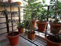 12DCU00222: Balcony 1