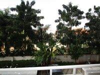 14DCU00368: Balcony 2