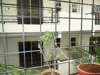 10M5U00074: Balcony