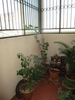 13F2U00309: Balcony 1