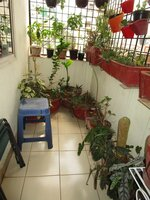 14DCU00583: Balcony 3