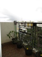 15OAU00165: Balcony 1