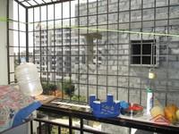 10DCU00179: Balcony