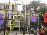 14DCU00472: Balcony 1