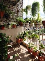 15J7U00295: Balcony 1