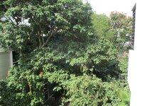14NBU00037: Balcony 2