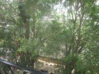 13S9U00010: Balcony 1