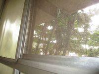 10A8U00431: Balcony 2