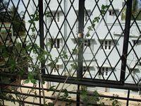 13J1U00173: Balcony 1