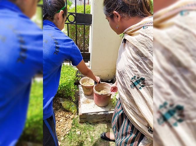 """Making of the compost"""" activity- Grade VIII"""
