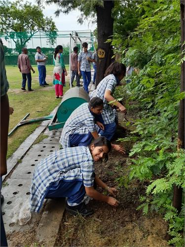 Tree Plantation Drive by Directorate of Education