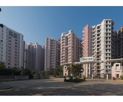Eldeco Saubhagyam –4BHK Penthouse with Terrace on Raebareli Road - Image 2/2