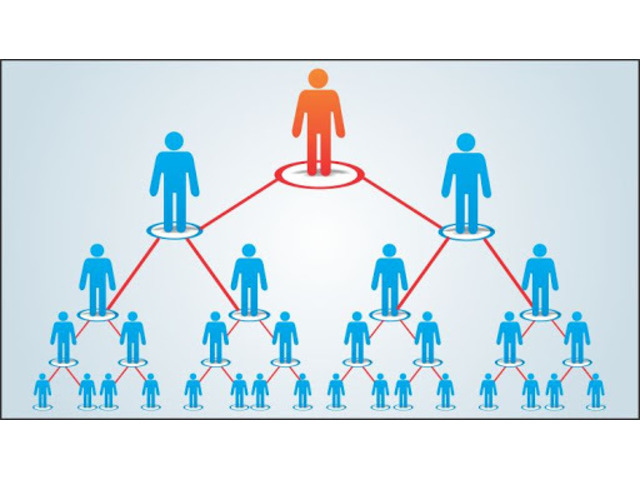 Ensure Success with the Right MLM Plan by Connecting with PiplByte - 1/1