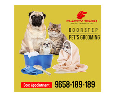 We offers Pet Grooming and Pet Training Services at Home in Delhi-NCR - Image 3/3