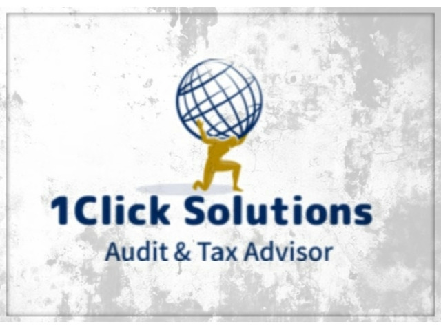 AUDIT & TAX Advisor - 5/8