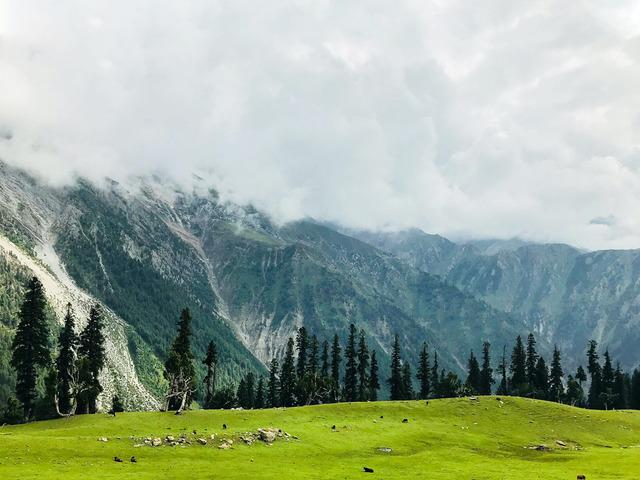 Kashmir Tour package - 1/1