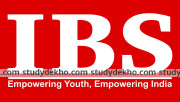Ibs Pvt Ltd Logo