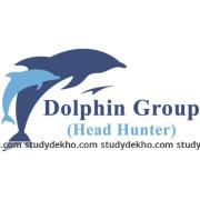 Dolphin Head Hunters Logo