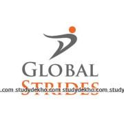 Global Strides Logo