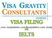 Visa Gravity Consultants Logo