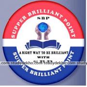 Supper Brilliant Point Logo