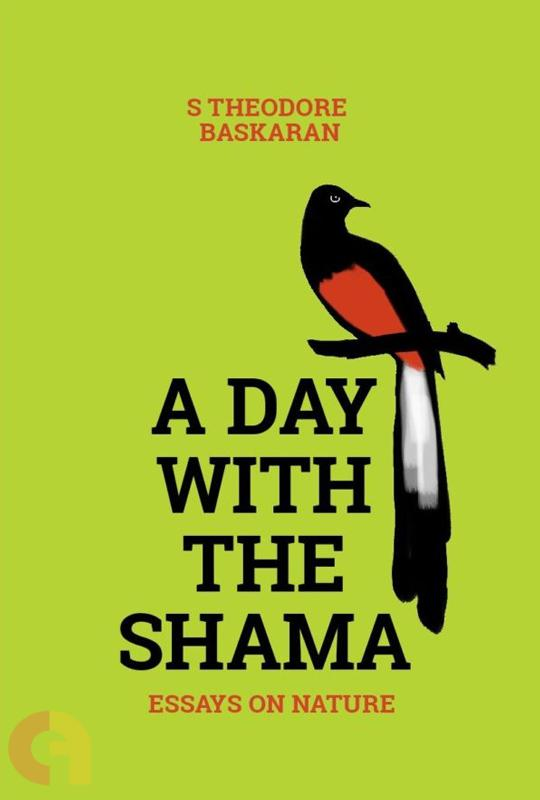 A Day with the Shama