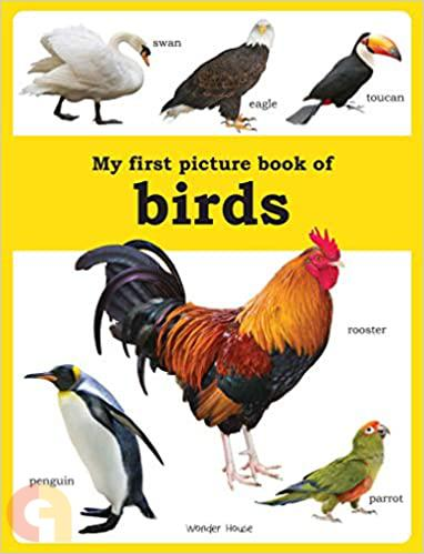 My first picture book of Birds (Wonder House Books)