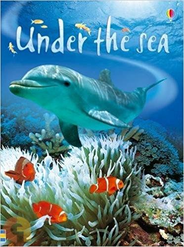 Under The Sea (Beginners Series) - Usborne