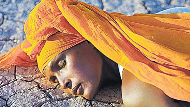 பெண் எழுத்து: கொடுமையை எரிக்கும் பாலைவனப் பூ
