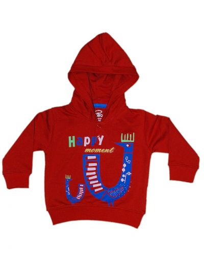 MFB6384986 - Boys Hooded Sweater