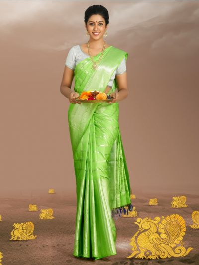 Estrila Traditional Handloom Pure Silk Saree