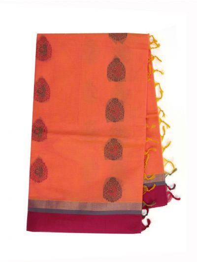 Kovai Cotton Saree - NLD6246996