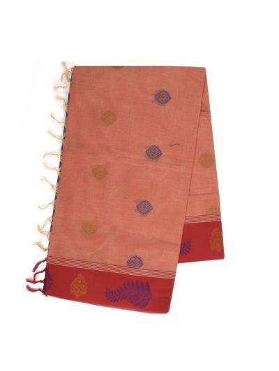 Kanchi Cotton Saree - NLA4538745