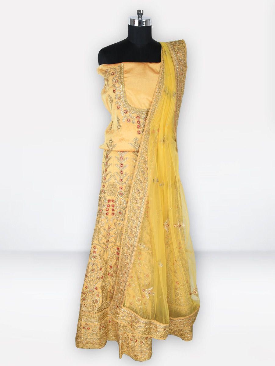 Embroidered Net Lehenga Style Embellished Saree-MGC0122335