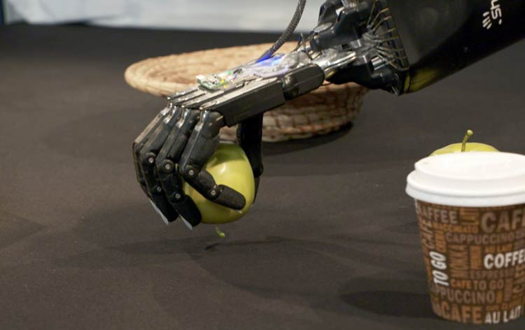 Researchers develop self-learning robotic hands using Deep Learning