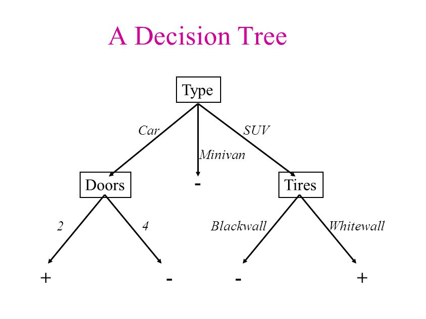 Decision Tree Algorithm for a Predictive Model