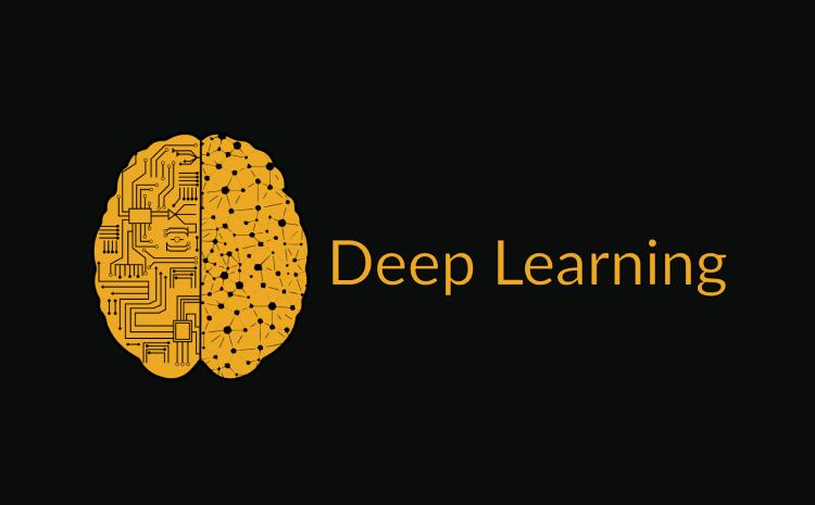 The Popular Deep Learning Libraries for Data Science