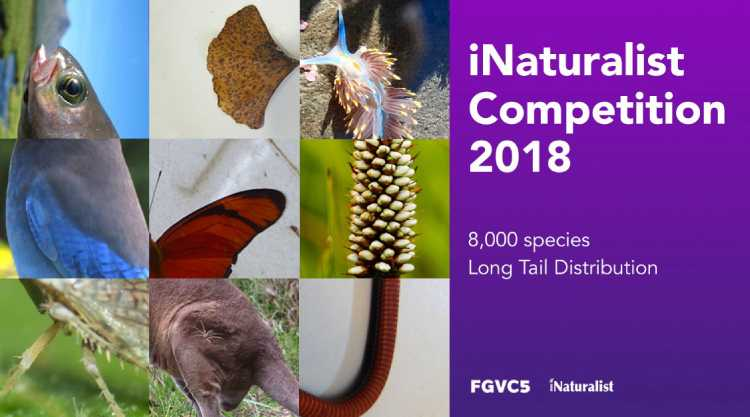 Introducing the iNaturalist 2018 Challenge!